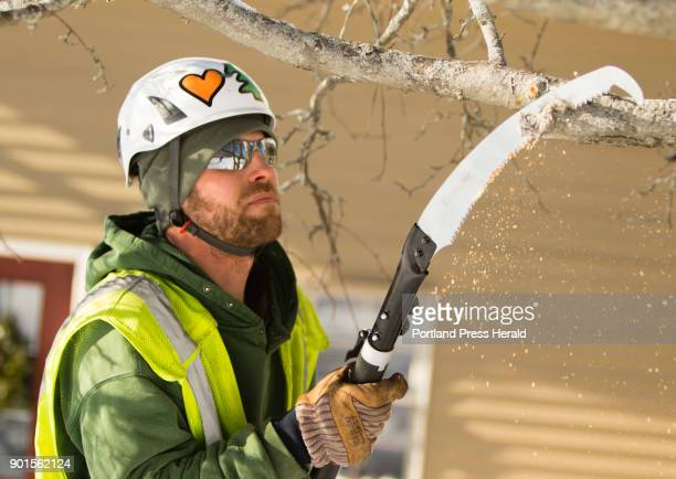 Lucas Tree Experts arborist Chris Everest trims a tree in a Portland yard on a frigid Wednesday December 27 2017 The Hollis man said about working in...