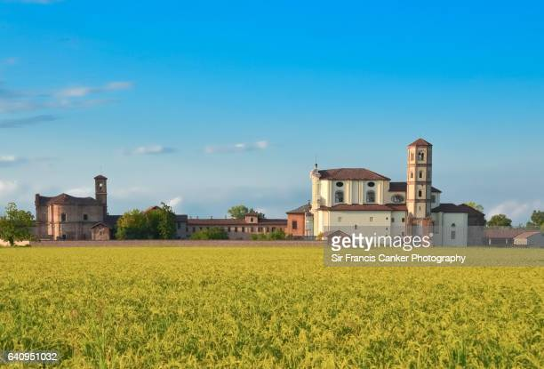'Lucedio' abbey surrounded by golden rice fields or paddies