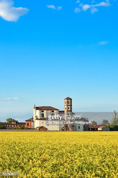 Lucedio abbey surrounded by golden rice fields
