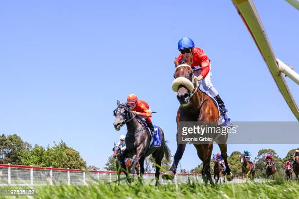 Lucente ridden by Jack Martin wins the Better Rural Health Services BM58 Handicap at Stony Creek Racecourse on January 30, 2020 in Stony Creek,...