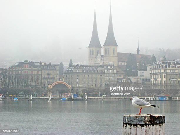 Lucerne winter mood