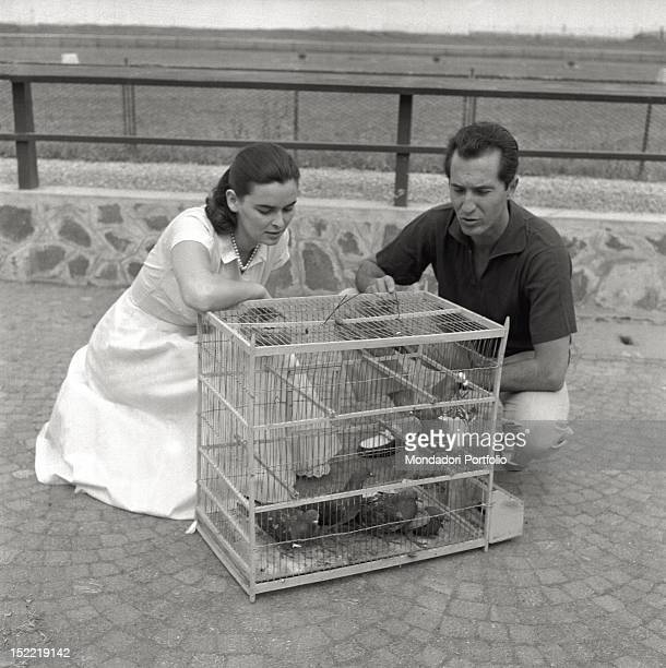 Lucia Bosè and his bullfighter husband Luis Miguel Dominguin are crouched to watch some caged pigeons. Venice, 1956.