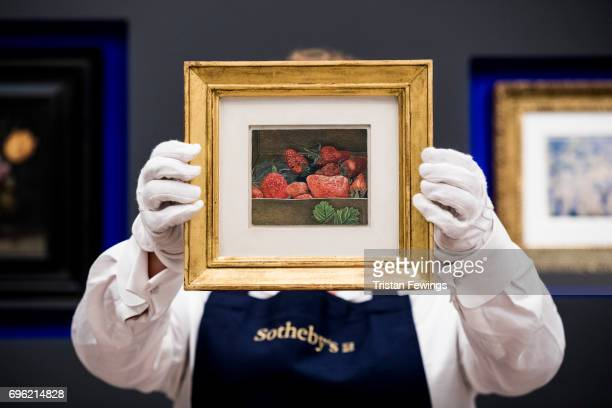 Lucian Freud's Strawberries goes on view at Sotheby's on June 15 2017 in London England The work is one of the highlights of Sotheby's first ever...