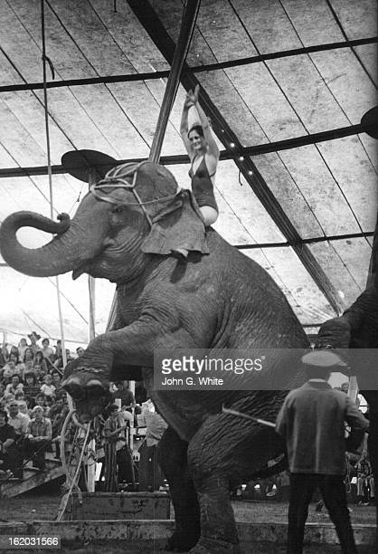 APR 19 1973 MAY 30 1973 Luciana Loyol a seventhgeneration circus bareback rider rides an elephant during a performance the Carson and Barnes circus...