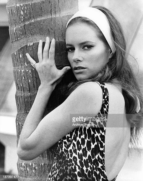 Luciana Paluzzi wearing a white headband and a leopard leatard hugging a palm tree in a scene from the film 'Thunderball', 1965.