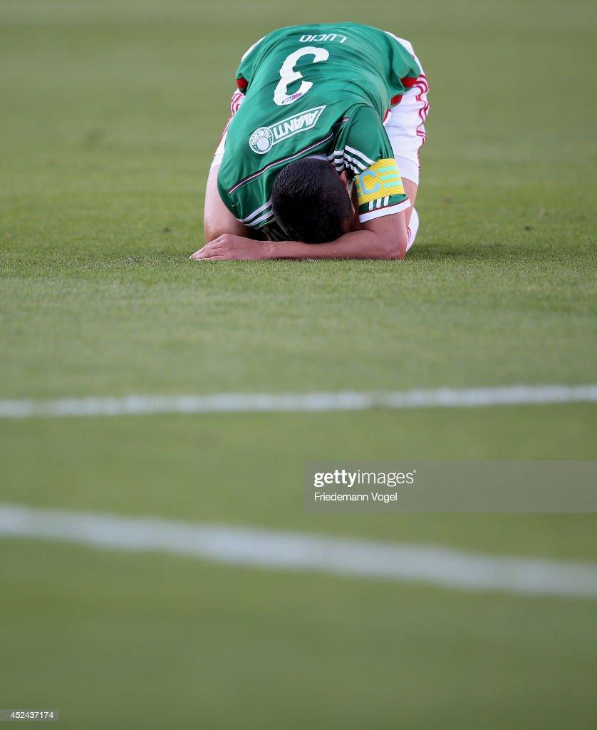 Palmeiras v Cruzeiro - Brasileirao Series A 2014