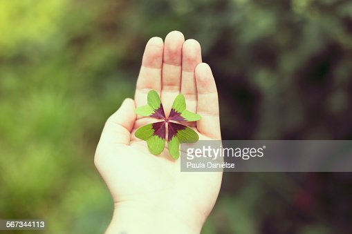 Luck In The Palm Of Your Hand Stock Photo - Getty Images