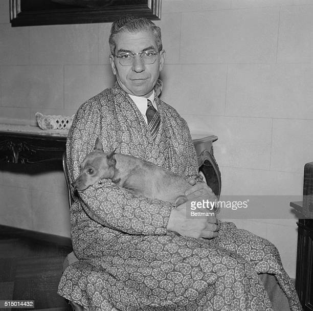 Lucky Luciano loves his pet miniature Doberman pinscher To all appearances the 57 year old reputed Sicilian born alleged racketeer has all the...