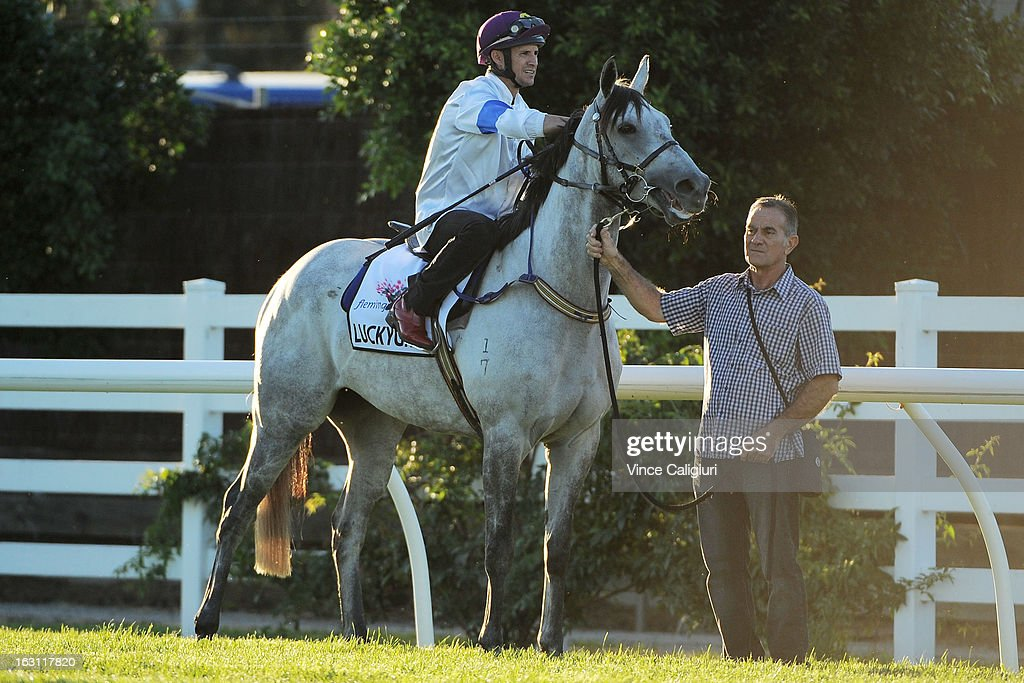 Luckygray is walked to the barriers by trainer Gino Poletti before his trial down the straight during a trackwork session at Flemington Racecourse on March 5, 2013 in Melbourne, Australia.