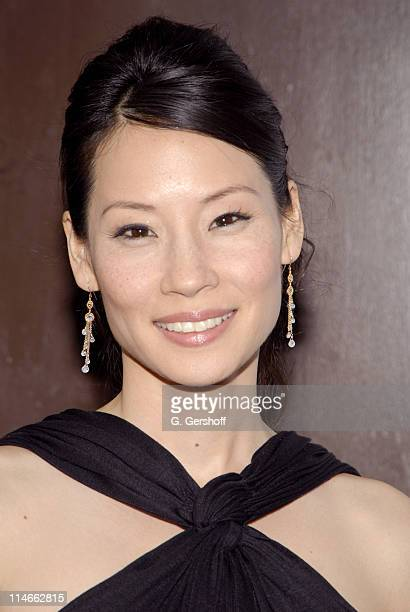 Lucy Liu executive producer during 5th Annual Tribeca Film Festival 'Freedom's Fury' Press Conference Outside Arrivals at Tribeca Grand Hotel in New...