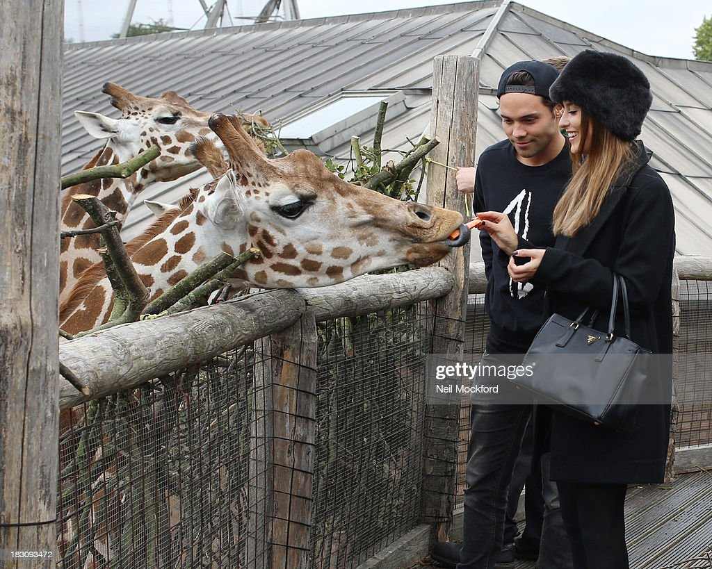 Lucy Watson and Andy Jordan are pictured feeding the giraffes and watching the penguins at ZSL London Zoo on October 4, 2013 in London, England.