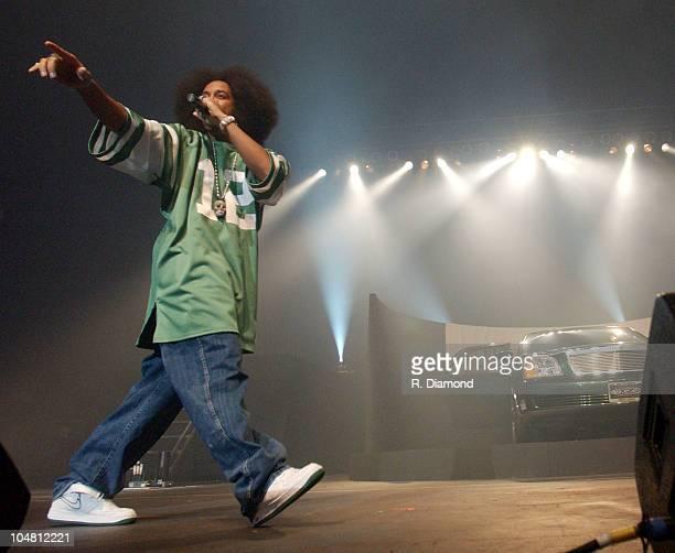 Ludacris during HOT 1079 FM's 8th Annual Birthday Bash at HiFi Buys Amphitheater in Atlanta Georgia United States