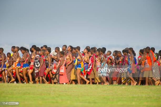 Image contains nudity Ludzidzini Swaziland Africa Annual Umhlanga or reed dance ceremony in which up to 100000 young Swazi women gather to celebrate...