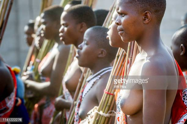Image contains nudity Ludzidzini Swaziland Africa Umhlanga reed dance ceremony Maidens present cut reeds to the queen mother of Swaziland for her...