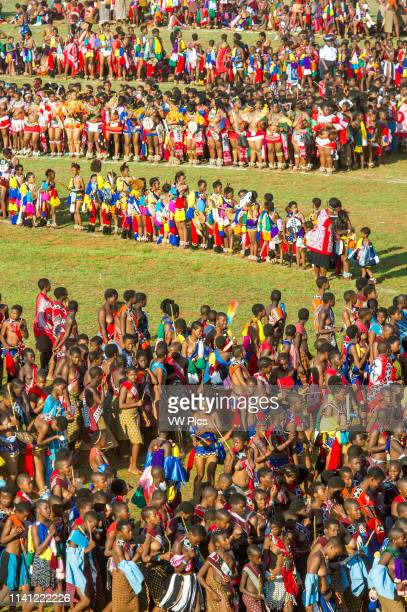 Image contains nudity Ludzidzini Swaziland Africa Umhlanga reed dance ceremony Maidens dance before King Mswati III on day 7 of the ceremony