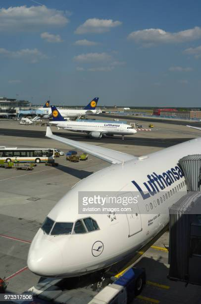 Lufthansa Airbus A330300 parked at the gate with A320200 taxiing and Boeing 747400s behind