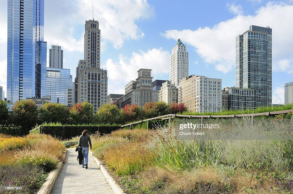 Luie Garden in Chicago's Millennium Park : Stock Photo
