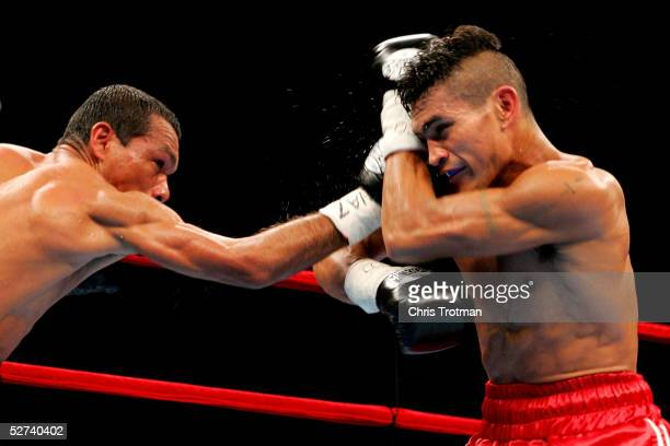 Luis Bolano lands a right on Luis Perez during their IBF Junior Bantamweight Championship bout at Madison Square Garden on April 30, 2005 in New York...