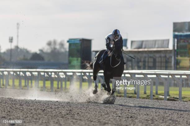 Luis Cáceres rides in the eighth race during competition day as Uruguay slowly returns to normal due to coronavirus outbreak at Maroñas Horse Track...