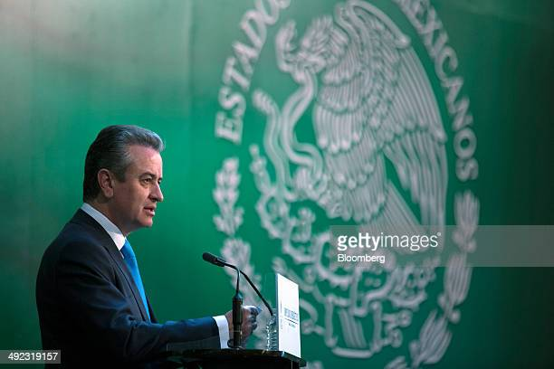 Luis Pena Kegel chief executive officer of HSBC Mexico speaks during an event at the Palacio Nacional in Mexico City Mexico on Monday May 19 2014...