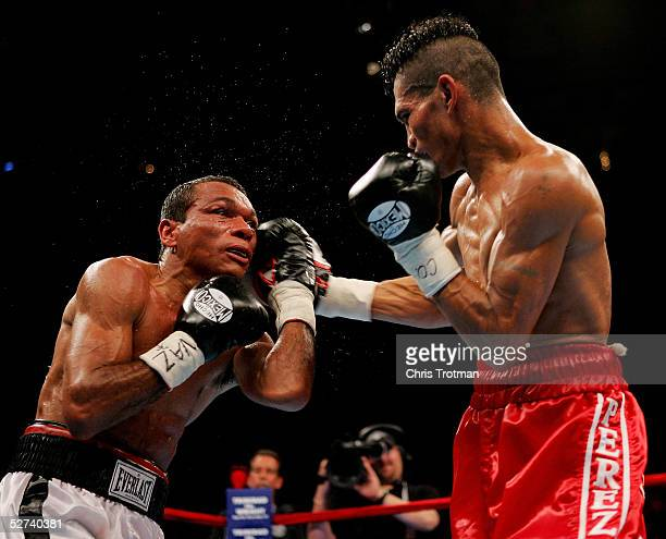 Luis Perez lands a right on Luis Bolano during their IBF Junior Bantamweight Championship bout at Madison Square Garden on April 30, 2005 in New York...