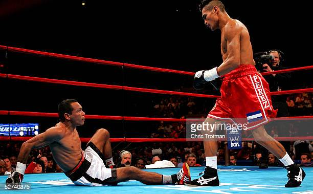 Luis Perez looks down on Luis Bolano after knocking him down during their IBF Junior Bantamweight Championship bout at Madison Square Garden on April...