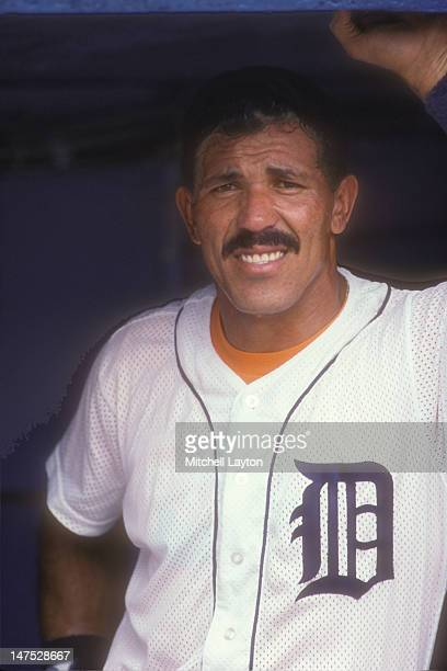 Luis Salazar of the Detroit Tigers looks on during a baseball game against the Oakland Athletics on June 1 1988 at Tigers Stadium in Detroit Michigan
