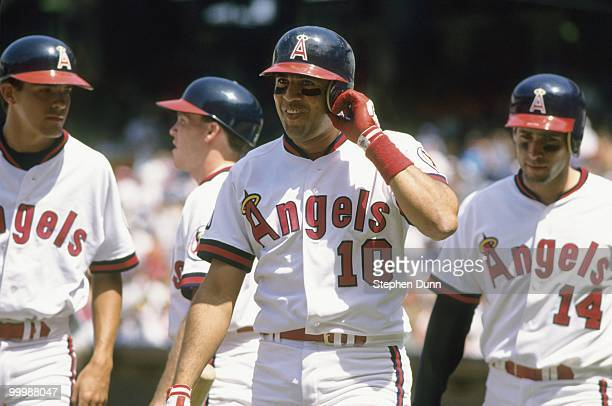 Luis Sojo of the California Angels looks on during the game against the Kansas City Royals at Anaheim Stadium on June 14 1992 in Anaheim California