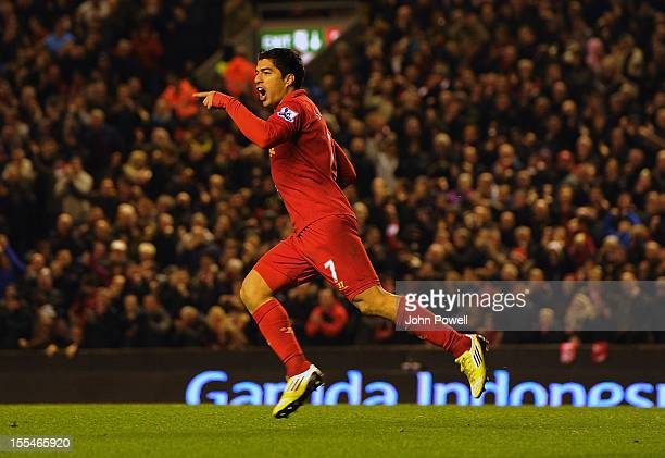 Luis Suarez of Liverpool celebrates his goal during the Barclays Premier League match between Liverpool and Newcastle United at Anfield on November 4...