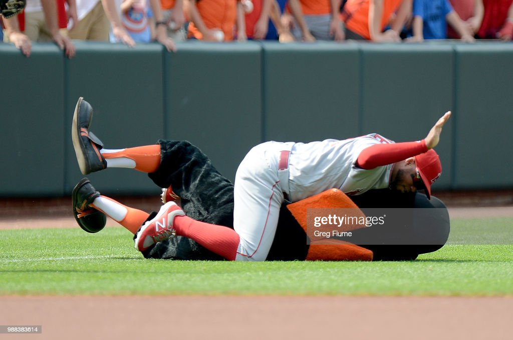 Luis Valbuena #18 of the Los Angeles Angels tackles the Baltimore Orioles mascot before the game at Oriole Park at Camden Yards on June 30, 2018 in Baltimore, Maryland.