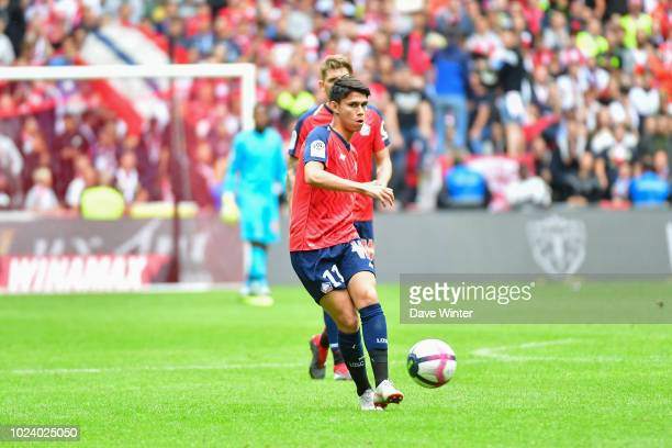 Luiz Araujo of Lille during the Ligue 1 match between Lille and Guingamp on August 26, 2018 in Lille, France.