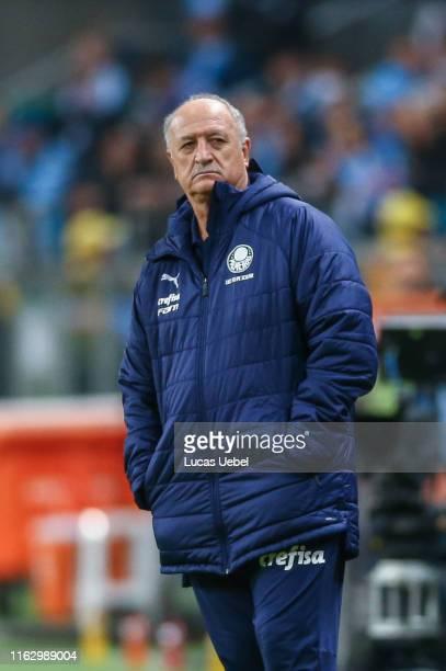 Luiz Felipe Scolari coach of Palmeiras gestures during the match Gremio v Palmeiras as part of Copa CONMEBOL Libertadores 2019 at Arena do Gremio on...