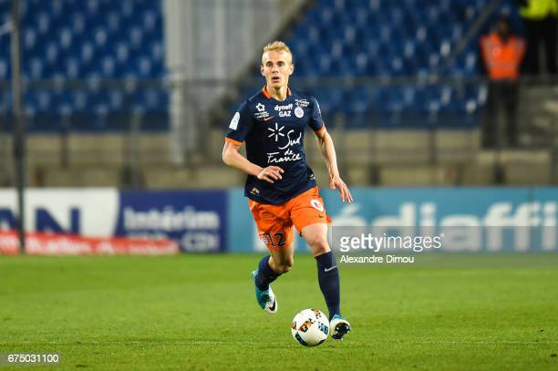 Lukas Pokorny of Montpellier during the French Ligue 1 match between Montpellier and Lille at Stade de la Mosson on April 29 2017 in Montpellier...