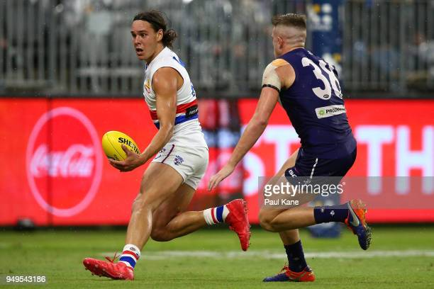 Lukas Webb of the Bulldogs looks pass the ball against Luke Ryan of the Dockers during the round five AFL match between the Fremantle Dockers and the...