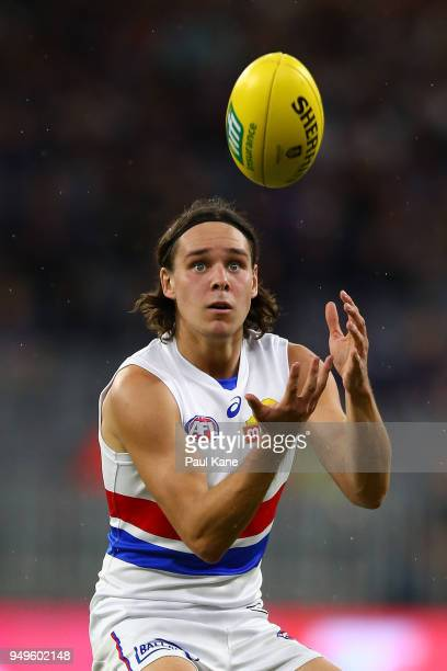 Lukas Webb of the Bulldogs marks the ball during the round five AFL match between the Fremantle Dockers and the Western Bulldogs at Optus Stadium on...