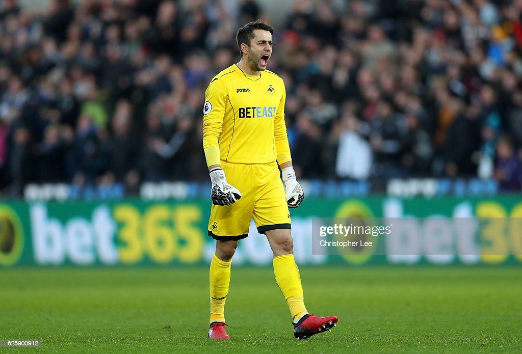 Swansea City v Crystal Palace - Premier League : ニュース写真