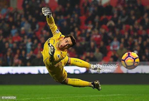 Lukasz Fabianski of Swansea City dives for the ball as a shot by Charlie Adam of Stoke City hits the post during the Premier League match between...