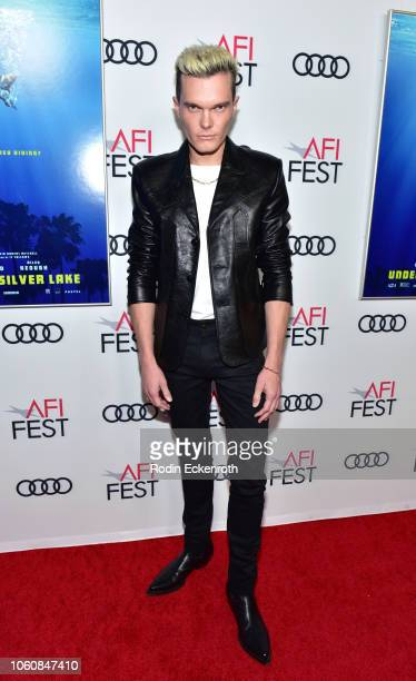 Luke Baines attends the screening of Under The Silver Lake during AFI FEST 2018 presented by Audi at the Egyptian Theatre on November 12 2018 in...