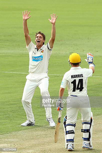 Luke Butterworth of the Tigers successfuly appeals for the wicket of Liam Davis of the Warriors during day one of Sheffield Shield match between the...