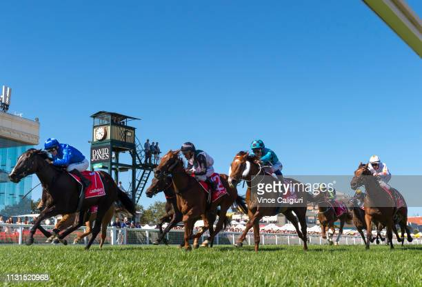 Luke Currie riding Lyre defeats Lankan Star in Race 7, Ladbrokes Blue Diamond Stakes during the Blue Diamond Stakes Day at Caulfield Racecourse on...