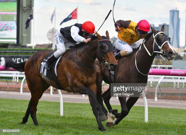 Luke Currie riding Tavistock Abbey defeats Michael Walker riding Main Stage in Race 7 AAMI Victoria Derby Trial during Melbourne Racing at Flemington...