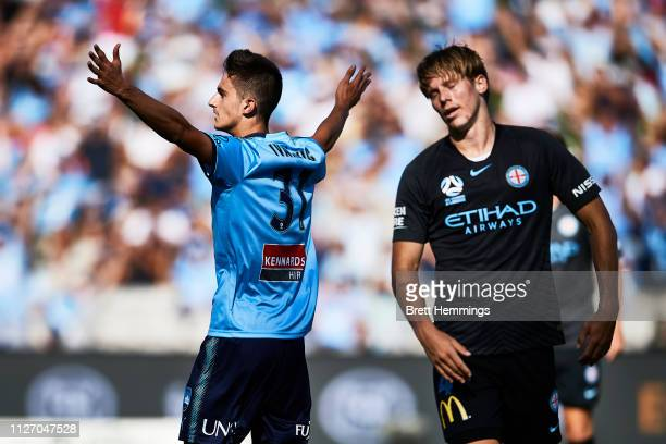 Luke Ivanovic of Sydney celebrates scoring a goal during the round 17 ALeague match between Sydney FC and Melbourne City at WIN Jubilee Stadium on...