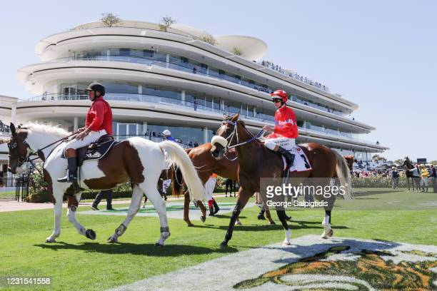 Luke Nolen returns to the mounting yard aboard Lightsaber after winning the MSS Security Sires' Produce Stakes at Flemington Racecourse on March 06,...