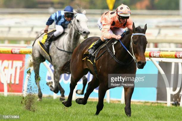 Luke Nolen riding Black Caviar leads the field to win race Four Schweppes Schillaci Stakes on Caulfield Guineas Day at Caulfield Racecourse on...