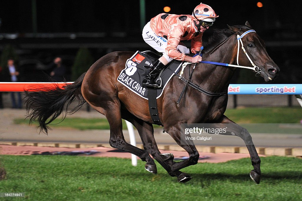 Luke Nolen riding Black Caviar winning her 24th straight win in the Hacer Group William Reid Stakes during Melbourne racing at Moonee Valley Racecourse on March 22, 2013 in Melbourne, Australia.