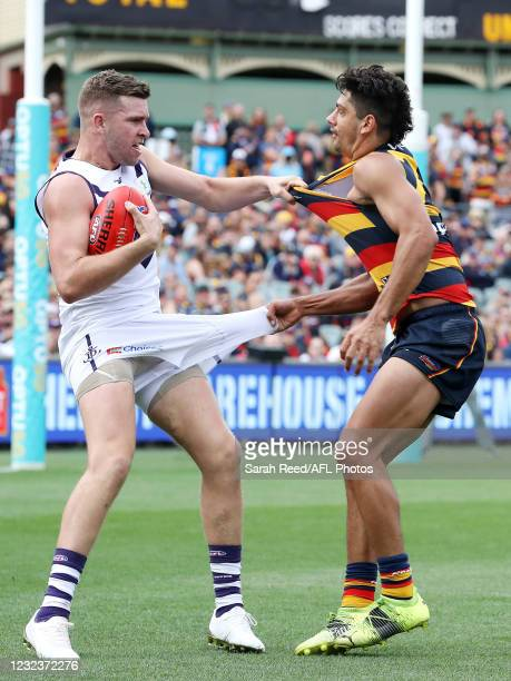 Luke Ryan of the Dockers and Shane McAdam of the Crows in action during the 2021 AFL Round 05 match between the Adelaide Crows and the Fremantle...