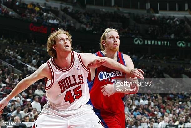 Luke Schenscher of the Chicago Bulls battles for position against Chris Kaman of the Los Angeles Clippers on March 10 2006 at the United Center in...