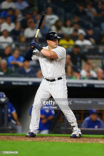 Luke Voit of the New York Yankees in action against the Toronto Blue Jays at Yankee Stadium on September 14, 2018 in the Bronx borough of New York...