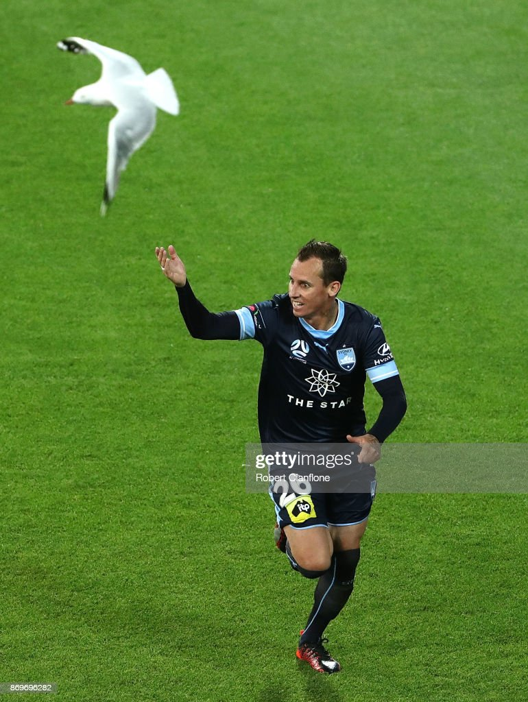 Luke Wilkshire of Sydney FC celebrates after scoring a goal during the round five A-League match between Melbourne City FC and Sydney FC at AAMI Park on November 3, 2017 in Melbourne, Australia.