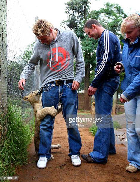 Luke Wright of England plays with a lion cub as Andrew Strauss watches during a team visit to the Johannesburg Lion Park on November 18 2009 in...
